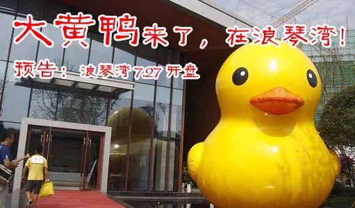 浪琴湾&大黄鸭 预告:7.27开盘建面3400元/㎡起