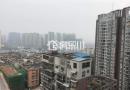 通江观江大三房  130㎡房东急售65万读书方便,地段成熟