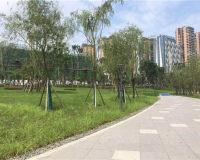 佳乐江屿城实景图