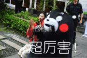 买房好时机!2019滟澜洲夏季房交会进行中,开启购房钜惠!
