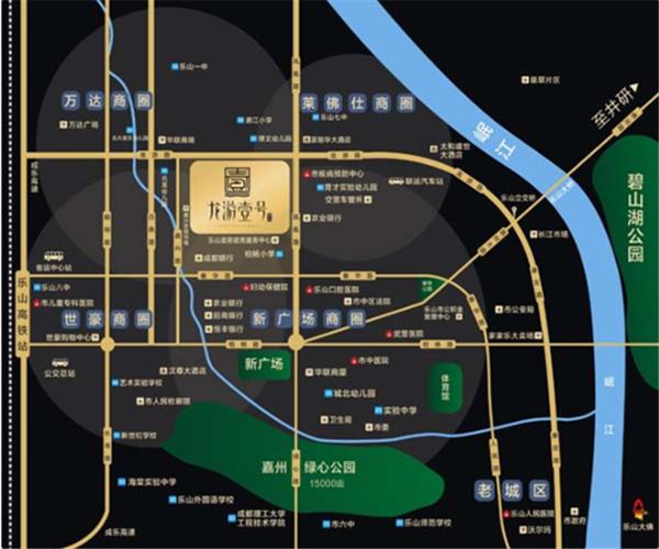 龙游壹号区位图.png