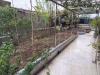 乐山带平台的二手房 亚马逊带100平米的平台花园