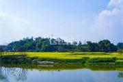 峨眉九宾湿地一片桃源之处给你悦享臻境