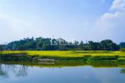 峨眉九宾湿地   一席江山美景,理想生活之境