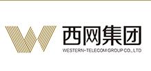 四川西网投资集团有限公司