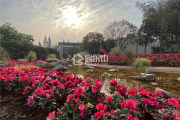 论佛光湖海棠别院是否真的具有康养旅居属性?