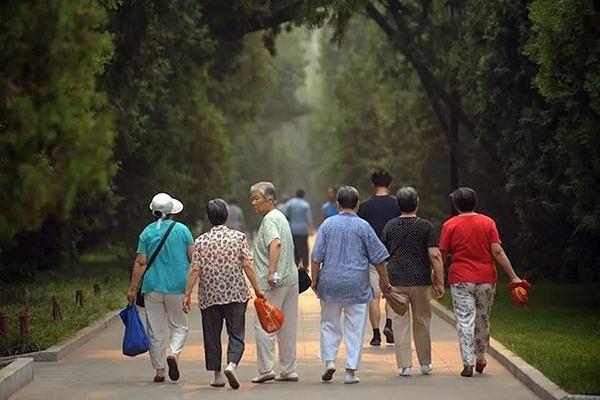 老龄人口示意图