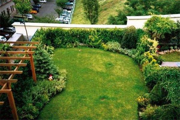 大面积绿植覆盖