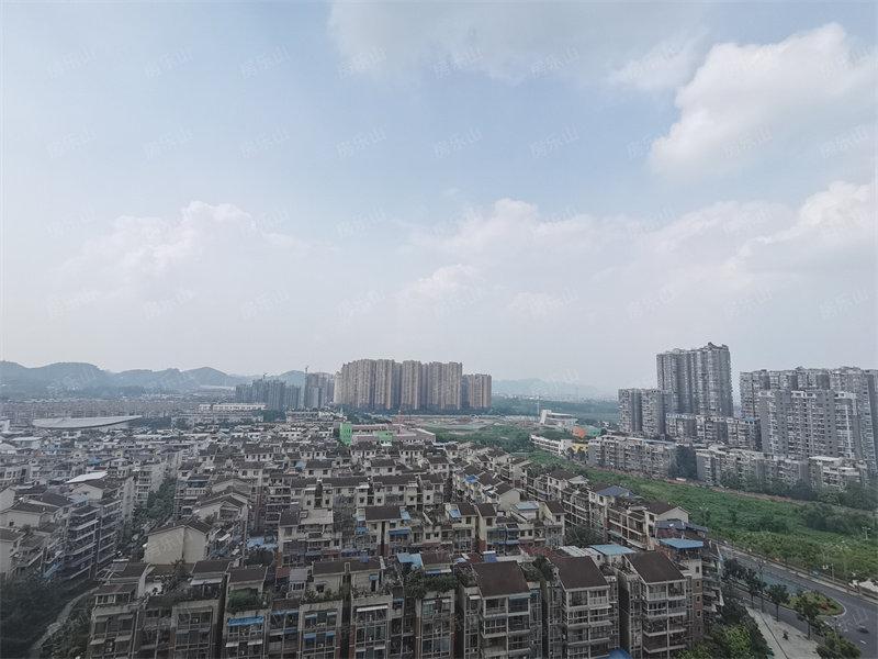 乐山城市鸟瞰图